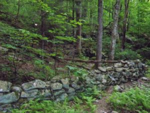 Natural forces carried the rocks from the high mountain slopes.