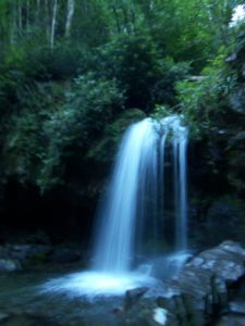 Hikes to Grotto Falls are beautiful, especially in the morning.