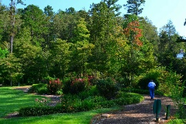 Guests love strolling the Buckhorn Inn gardens.