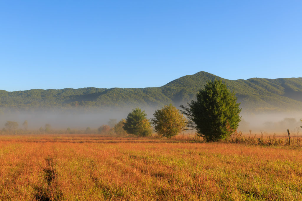 Cades Cove is a beautiful setting for the Loop Lope.