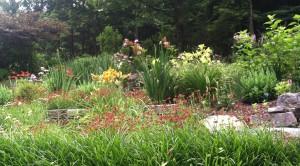 Copy of St Cordelia's Garden Summer 2014