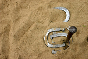 The NHPA has been the governing body of horsehoes since 1926.