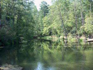 The Buckhorn Inn Nature Trail features a spring-fed pond.