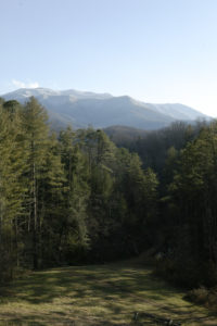 Mount Le Conte is a beautiful backdrop to dinner at the Inn.