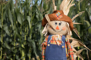 Scarecrows are the perfect symbol of the harvest season.